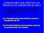 condiciones que afectan los procesos de absorci n de agua30