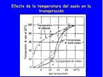 efecto de la temperatura del suelo en la transpiraci n