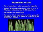 mecanismo activo19