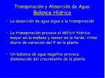 transpiraci n y absorci n de agua balance h drico