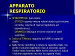apparato respiratorio13
