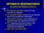 apparato respiratorio14