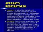 apparato respiratorio3