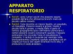 apparato respiratorio5