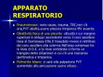 apparato respiratorio8