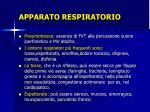 apparato respiratorio9