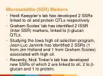 microsatellite ssr markers12