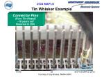 tin whisker example26
