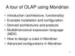 a tour of olap using mondrian