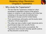 modeling urban revolution uruguay s tupamaros11