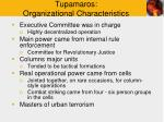 tupamaros organizational characteristics