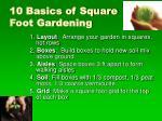 10 basics of square foot gardening