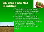 ge crops are not identified