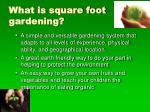 what is square foot gardening