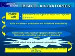 peace laboratories17