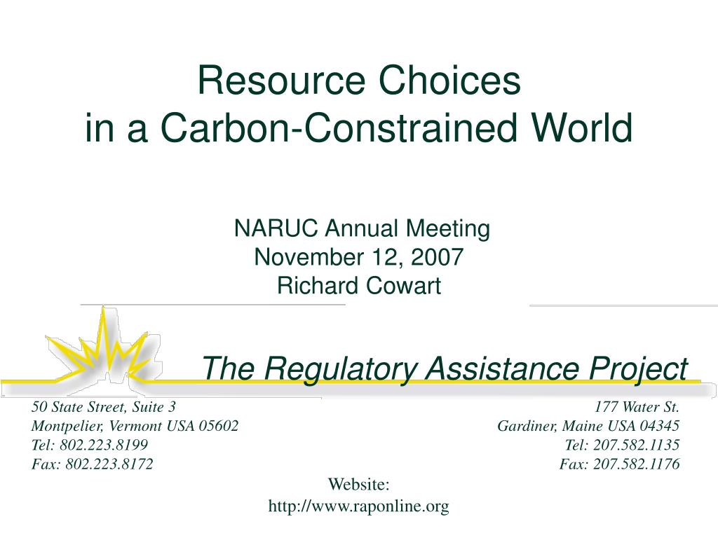 resource choices in a carbon constrained world l.