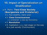 vii impact of specialization on stratification