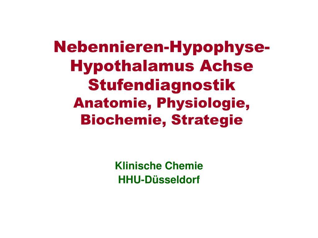 nebennieren hypophyse hypothalamus achse stufendiagnostik anatomie physiologie biochemie strategie l.
