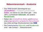 nebennierenmark anatomie