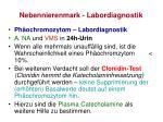 nebennierenmark labordiagnostik