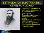 estimulacion electrica del cerebro humano