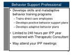 behavior support professional