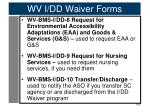 wv i dd waiver forms4