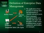 definition of enterprise data management