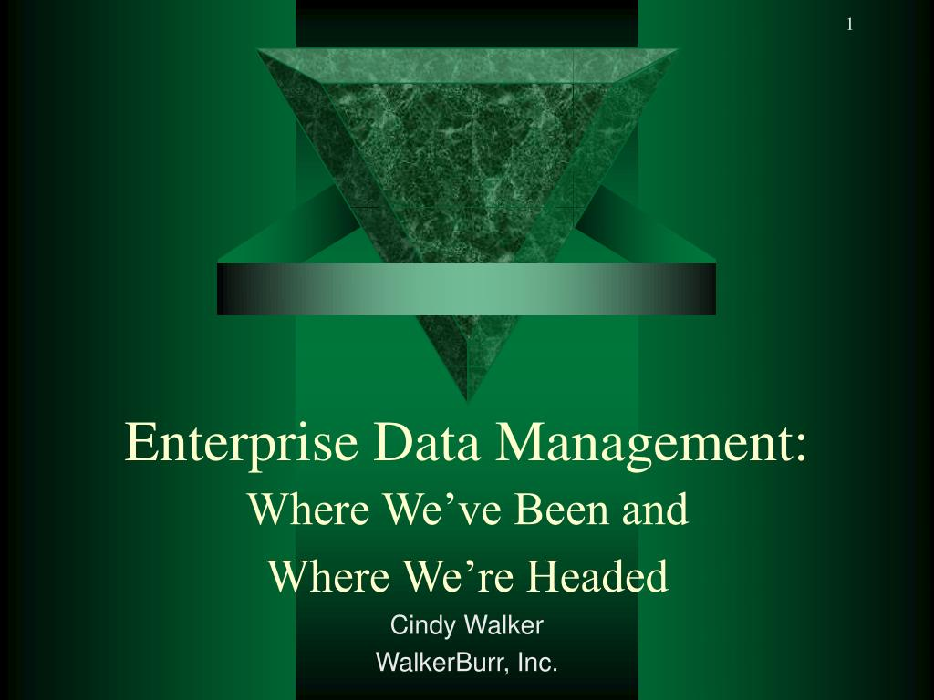 enterprise data management l.