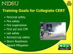 training goals for collegiate cert