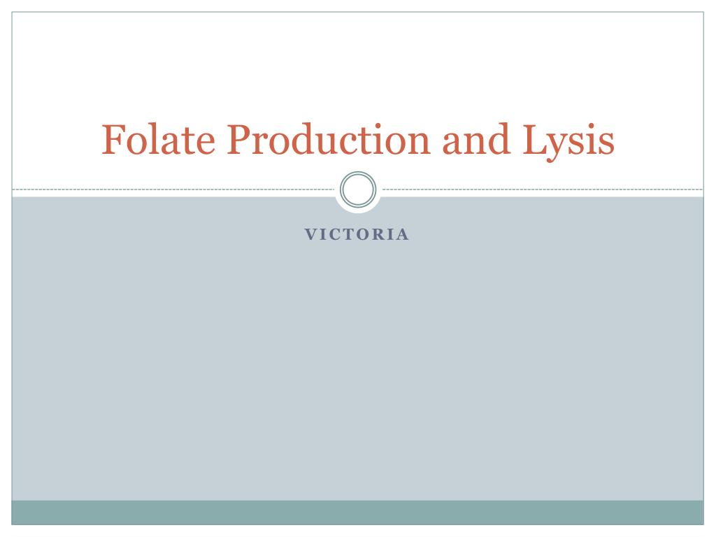 folate production and lysis l.