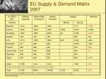 eu supply demand matrix 2007