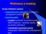 motivace a motivy9