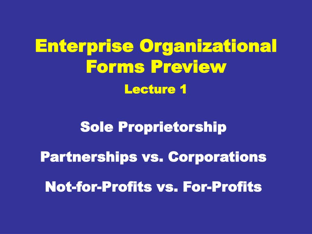 enterprise organizational forms preview lecture 1 l.