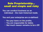 sole proprietorship small and simple and risky