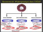 vasomotricit th rapeutique dans l htap