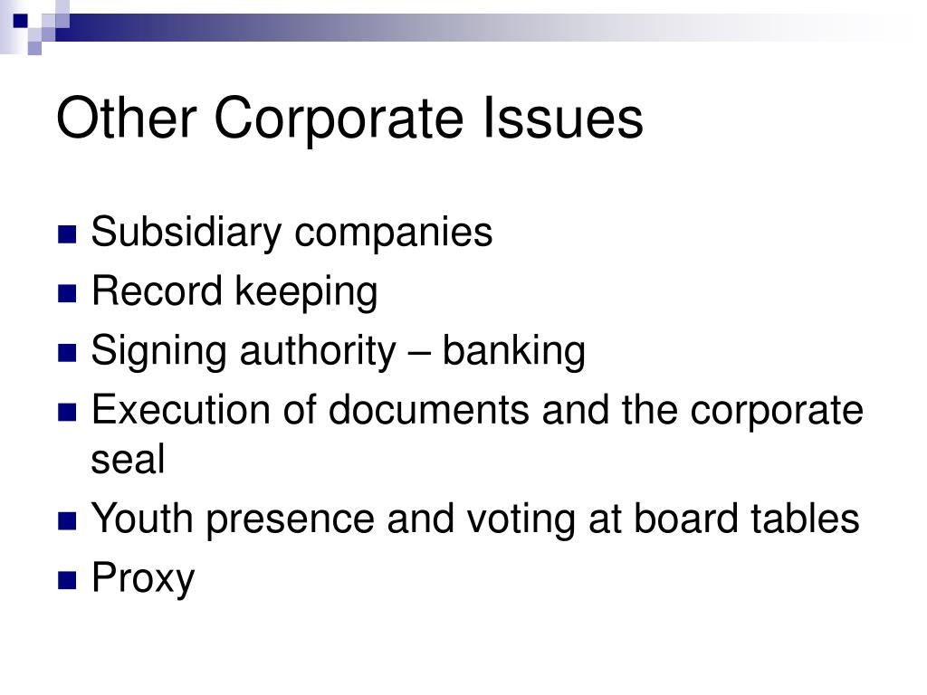 Other Corporate Issues