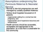assumptions underpinning the peninsula maternal neonatal service
