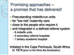 promising approaches a promise that has delivered