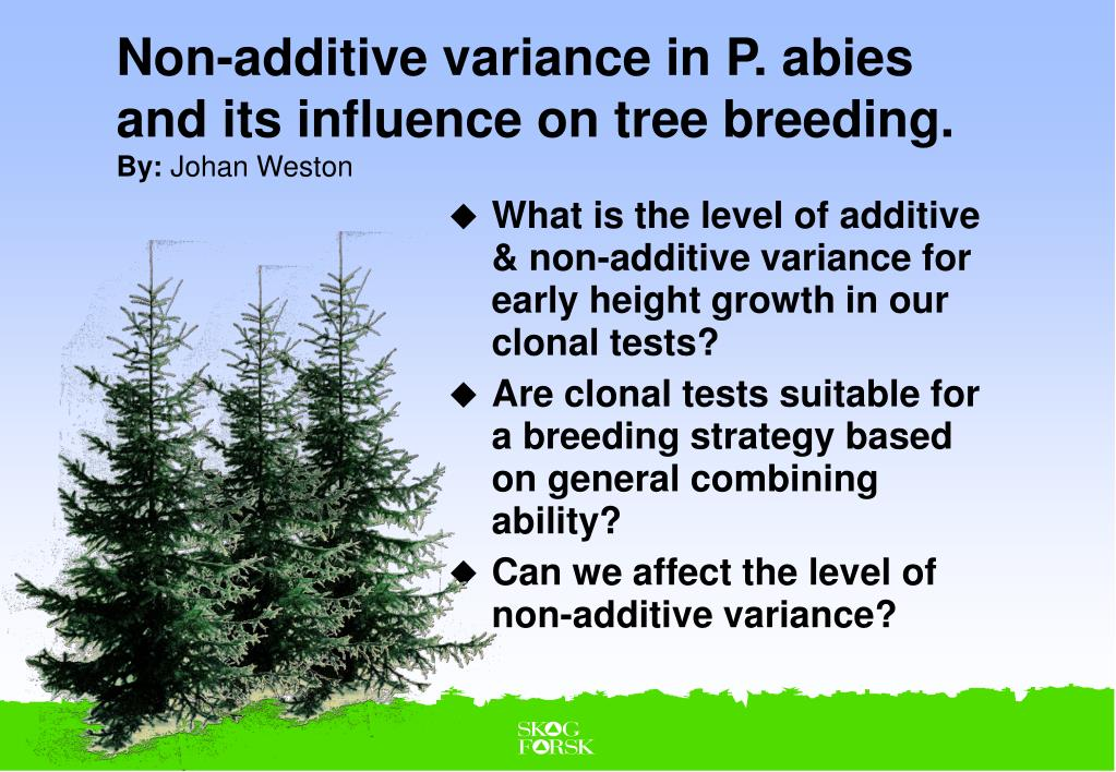 non additive variance in p abies and its influence on tree breeding by johan weston l.