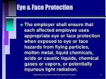 eye face protection
