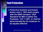 foot protection103