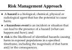 risk management approach