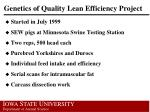 genetics of quality lean efficiency project
