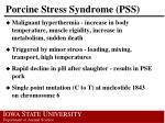 porcine stress syndrome pss