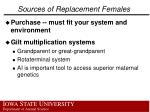 sources of replacement females1