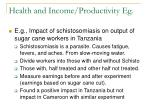 health and income productivity eg