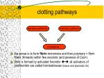 clotting pathways