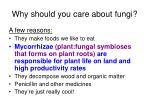 why should you care about fungi20