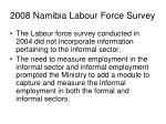 2008 namibia labour force survey